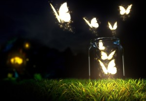 ced78-illumination-butterflies-in-night